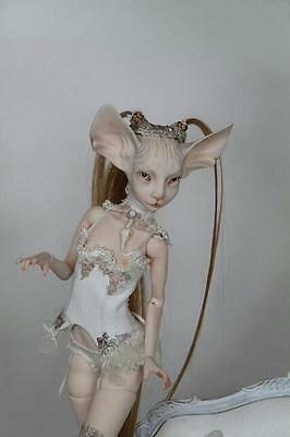 Limited Time Discount 1/4 Doll Sphynx Cat Free Eyes + FaceUp Free Shipping