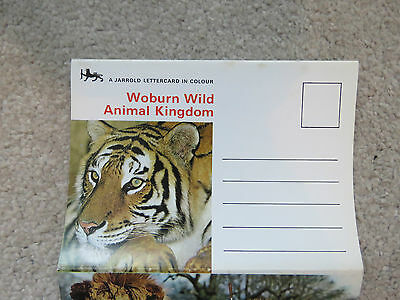Vintage 1970s Woburn Animal Kingdom Lettercard - 5 views animals and cars