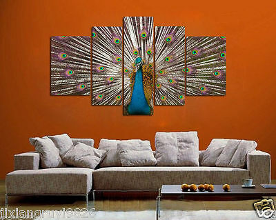 Oil Painting  On Canvas Dec Wall Art,Beautiful peacock 5pc (No fraemd)
