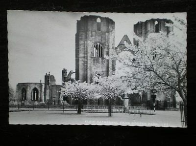 Postcard Rp Moray Elgin Cathedral
