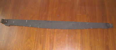 "very long 57"" old cross cut saw HOME SHED DECOR artists paint board MAN CAVE"