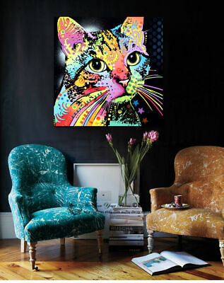 Colour Cat Animals Stretched Canvas Print Framed Wall Art Home Decor Painting