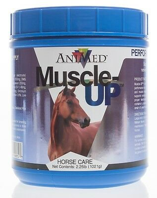 Muscle-Up Powder, 2.5 lb