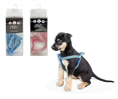 Small/medium Posh Pooch Glitter Dog Safety Harness