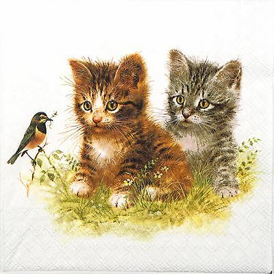 4 Single Table Party Paper Napkins for Decoupage Decopatch Craft Kitten Friend
