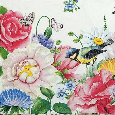 4 Single Table Party Paper Napkins for Decoupage Decopatch Craft Watercolor Bird