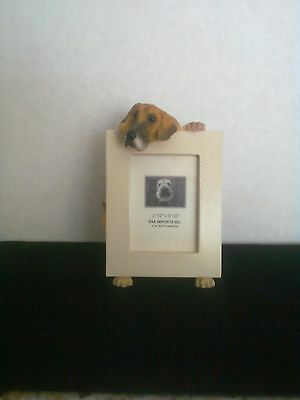 Great Dane Fawn Uncropped Small Picture Frame CLEARANCE SALE