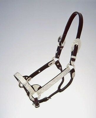 Royal King Suckling Dark Oil Silver Show Halter with Lead Western Horse Tack