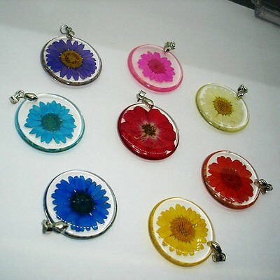 Women Girl Clear Resin Real Dry Flower Pendant Necklace Silver Plated Chain Chic