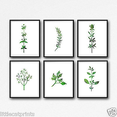 Garden Herbs Set Of 6 Watercolour Painting PRINT 8x10 Wall Art Watercolor