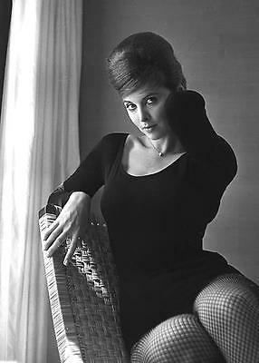 TINA LOUISE  LEOTARDS FISHNETS TV STARLET  LEGGY CHEESECAKE  8X10 PHOTO tl-2