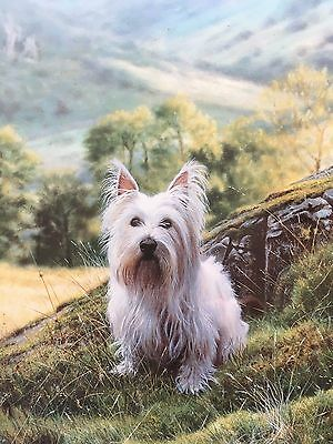 Steven Townsend Painting Print WESTIE West Highland White Terrier Dogs Stephen