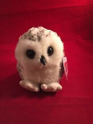 PUFFKINS OWEN The OWL DOB 3/17/00 with Tags