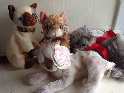 ty beanie babies Joblot Cats Siam Siamese Collectible Beanie Baby Excellent