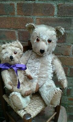 "Antique character early chiltern english large 22"" mohair jointed teddy bear"