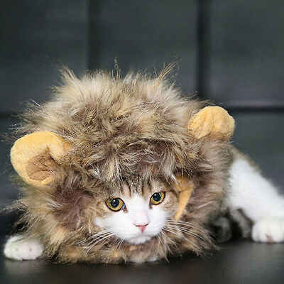 Pet Fashion Lion Mane Wig for Cat Dog Halloween Clothes Fancy Dress up with Ears
