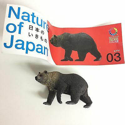 Nature Techni Colour Miniature Figure Brown Bear Kitan Club Japan