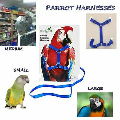 Parrot Harness - Harnesses - African Grey - Senegal - Macaw - Leash - Parrot -