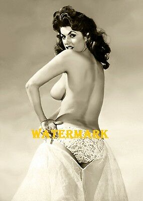 Beverly Powers -Pinup Girl, Burlesque Dancer, Vintage - Photo