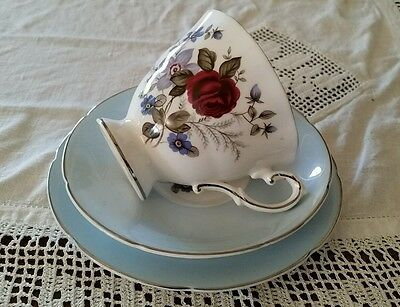 Vintage Royal Grafton Footed Trio 'Favourite Roses' Forget Me Nots