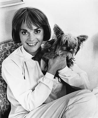 Natalie Wood And Her Dog  8X10 Photo 698