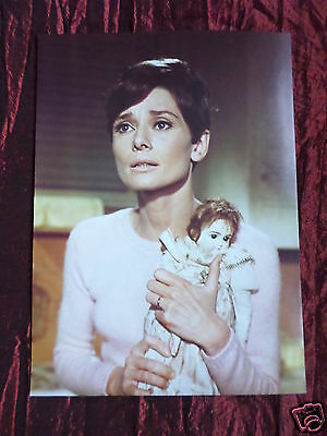 Audrey Hepburn - Film Star - 1 Page Picture - Clipping / Cutting - #2