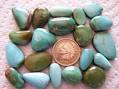 20 NATURAL Royston Turquoise Cabs 166 carats Cabochons Wholesale Lot Nevada