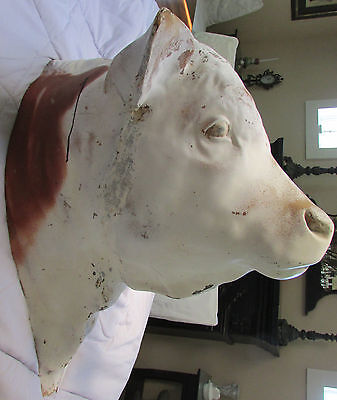 Vintage Giant Faux Hereford Cow Head Wall Hanging Decor Fiberglass Sculpture