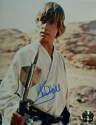 MARK HAMILL Genuine Hand signed 10x8 STAR WARS official Photograph