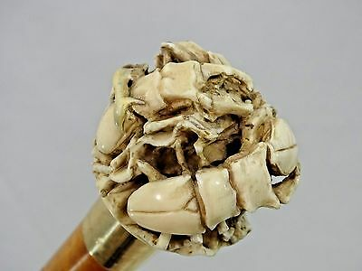Magnificent Antique Walking Cane Stick Carved Handle Beetle Solid Gold Band