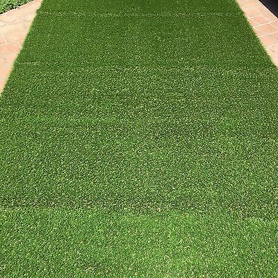 Synthetic Grass (Fake Grass) Brand New