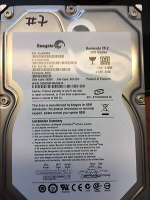 Seagate Barracuda Es.2 1Tb Hdd Sata Ii St31000340Ns 1000Gb