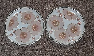 "Denby Gypsy Dinner Plates X2  Excellent Condition 10"" Diameter"