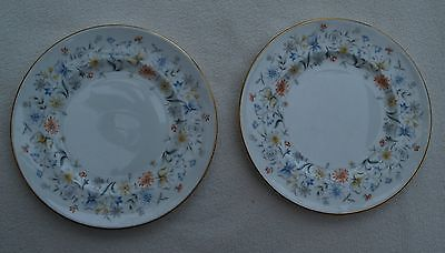 Two Pretty Floral Pattern Tea Plates From Coalport -English Garden