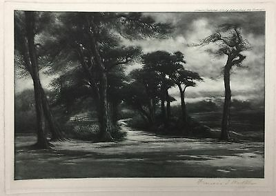 Francis Sylvester Walker RE (1848-1916) Hampstead Heath - Pencil Signed Etching