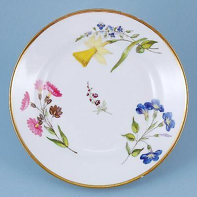 Swansea Porcelain Flower Decorated Plate, c1815-18