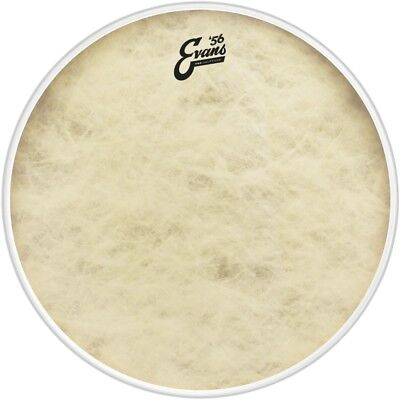 Evans EQ4 Calftone Bass Drum Head 22 in.