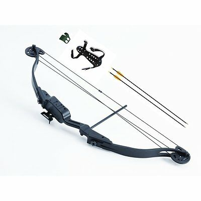 Petron Stealth Shoot Through Light Adult Youth Compound Archery Bow