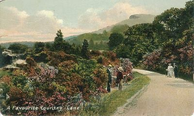 Favourite Country Lane, Indiana - mailed 1909