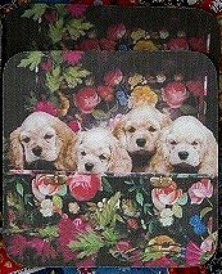 COCKER SPANIEL PUPS BUFF Rubber Backed Coasters #1018
