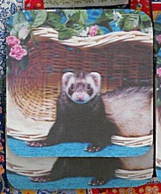FERRET SABLE Rubber Backed Coasters #0910