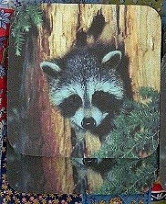 RACCOON Rubber Backed Coasters #0721