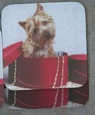 CAIRN TERRIER Rubber Backed Coasters #0675