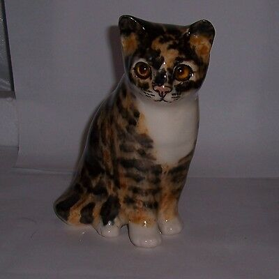 Winstanley Cat Kitten Size 2 Torty and White Sitting