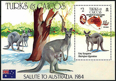 Turks & Caicos Is. 1984 SG#MS822 Ausipex Stamp Exhibition MNH M/S #D42312