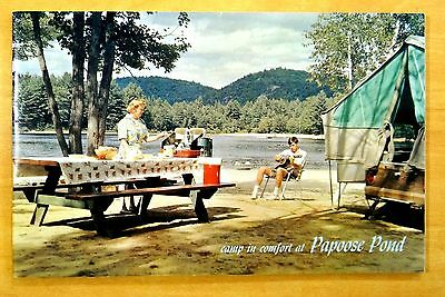 Papoose Pond Camping Camps Cottages North Waterford Maine Advert. Brochure 1960s