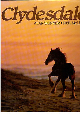 Clydesdale horse by Alan Skinner & Neil Mcleod heavy horse breed riding