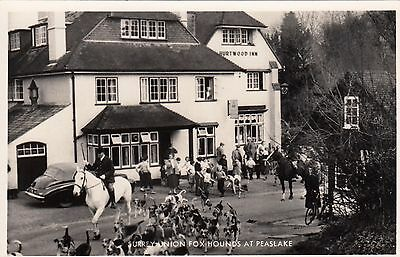 Surrey Union Foxhounds at Peaslake, Surrey, Real photo, old postcard, unposted