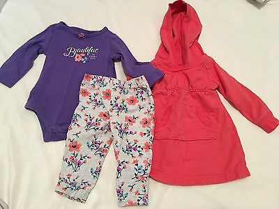 9 Months Carter's Girl Outfit 6-12 Month Old Navy Hoodie Dress/shirt