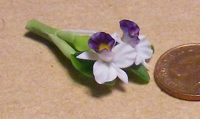 1:12 Scale Purple & White Orchid Dolls House Flower Garden Accessory 42s